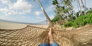 Passief inkomen – Kan je geld verdienen zonder werken?